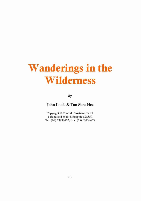 Wanderings in the Wilderness (2007)